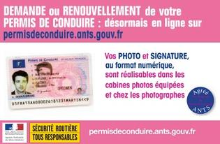 Photo didentite permis conduire 2